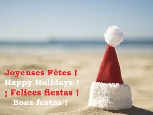 GoExport vous souhaite de Joyeuses Fêtes !